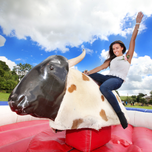 Rodeo Bull Inflatable Hire